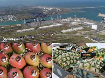 316_Collaboration_Dunkerque-Port_SIIM_EN