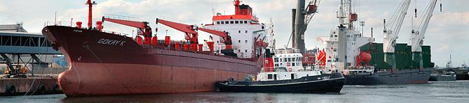 Ship services