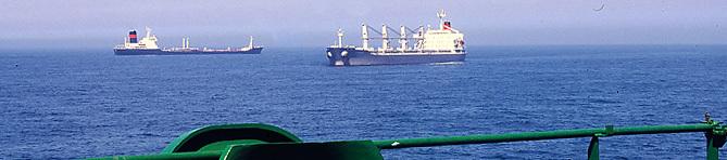 Navires au large du Port Est